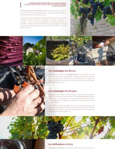 Mockup du site web du château Haut-plantade réalisé par l'agence C'est d'ici spécialisé en santé et bien-être