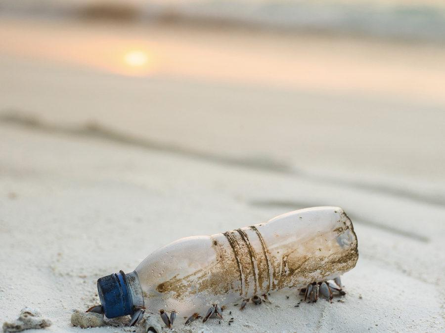 Et si on tentait l'expérience zéro déchets ?